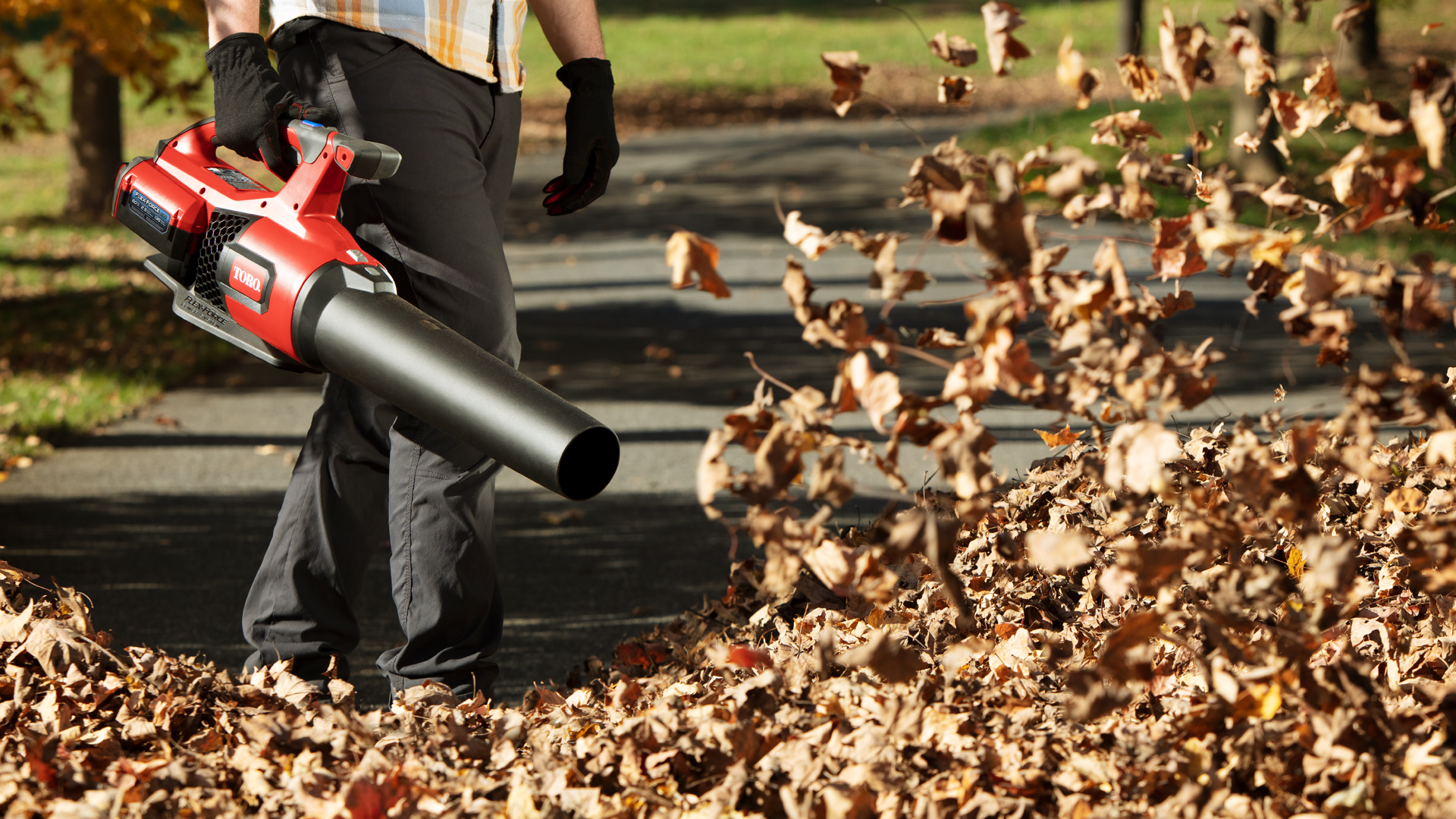 Toro leaf blower with a pile of leaves